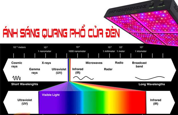 Quang phổ của đèn Led tập trung gần như toàn bộ ở dãy tần